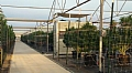 Helping Growers Control Greenhouse Humidity and Temperature