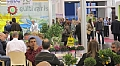 Growing Seasoning Plants at Home with Hishtil at IPM Essen 2015