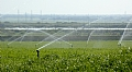 Seeking for watering technologies for agricultural land in Bangalore, India