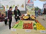 Desertech-The Agricultural Expo for the Arava Agriculture
