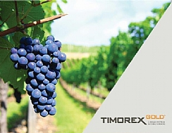 Chilean Ministry of Agriculture has authorized the extension of TIMOREX GOLD® (Enlarge)