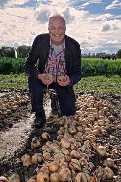 Hazera's Innovative High-Quality Onion Varieties are Sold Worldwide (Enlarge)