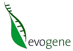 BASF and Evogene Collaborate (Enlarge)