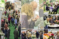 Flower Expo Ukraine Expects Continuation of Growth in 2017 (Enlarge)