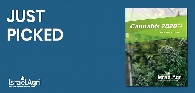 _____________Cannabis 2# Edition - Click to read