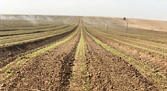 The Frontline of Precise Agriculture for the Benefit of Farmers Worldwide